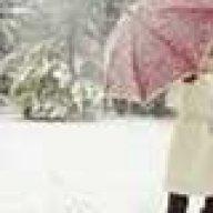 snowyyy