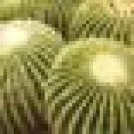 ekinocactus