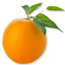 orange_orange